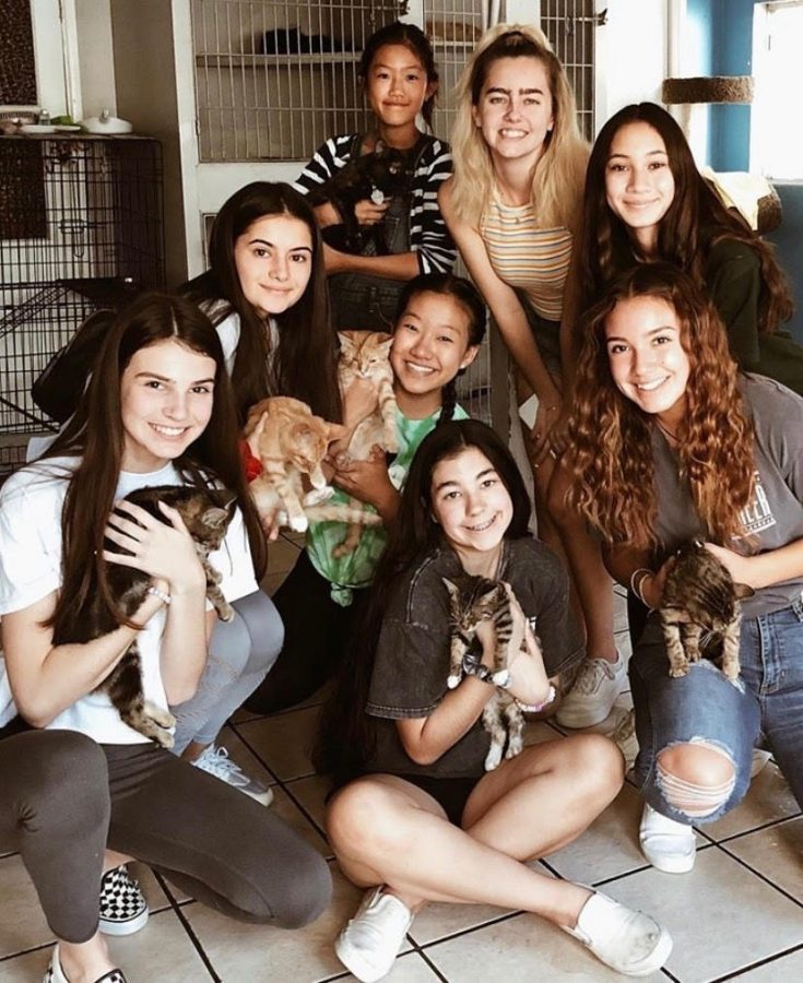BOHS students and RAISE members (clockwise from top right) Tessa Clements, Makena Loader, Ashley Alvarez, Brenna Reis, Vanessa Reeve, Sevval Kaplan, Aileen Kim (center), and sixth grader Sylvia Kim (top center)  hold rescue animals at VIDA, a Rowland Heights shelter that saves abused animals.