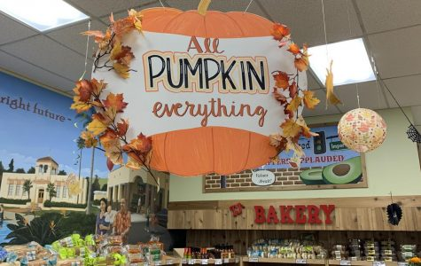 It's that time of year: shops like the Brea Trader Joe's and cafes introduce Fall-inspired food and drink. The Wildcat asked BOHS students: What are your favorite Fall treats?