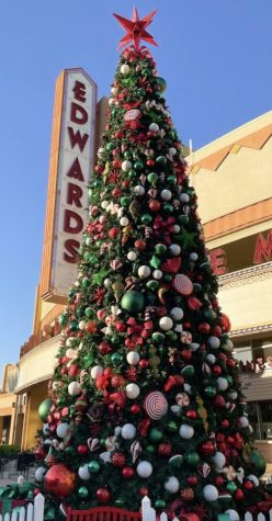 A large Christmas tree in Downtown Brea on Nov. 15. With Christmas decorations appearing earlier and earlier, Thanksgiving is being increasingly overlooked
