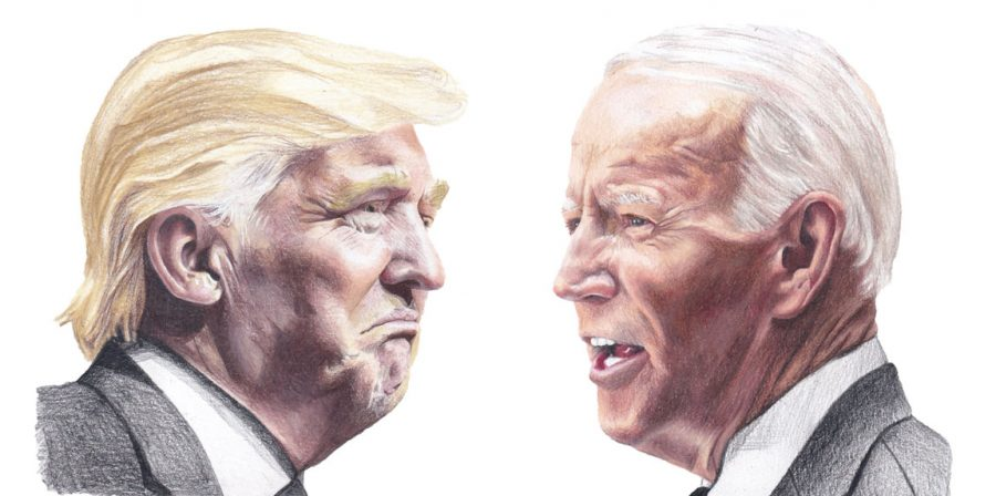 Donald Trump and Joe Biden squared off in the 2020 presidential election. Biden emerged the victor, with 306 electoral college votes, to Trump