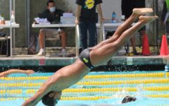 Joshua Santos, senior, dives into the BOHS pool during the Wildcats' warm-up for the May 12 meet against Villa Park High School. The Wildcats beat the Spartans in all five levels.